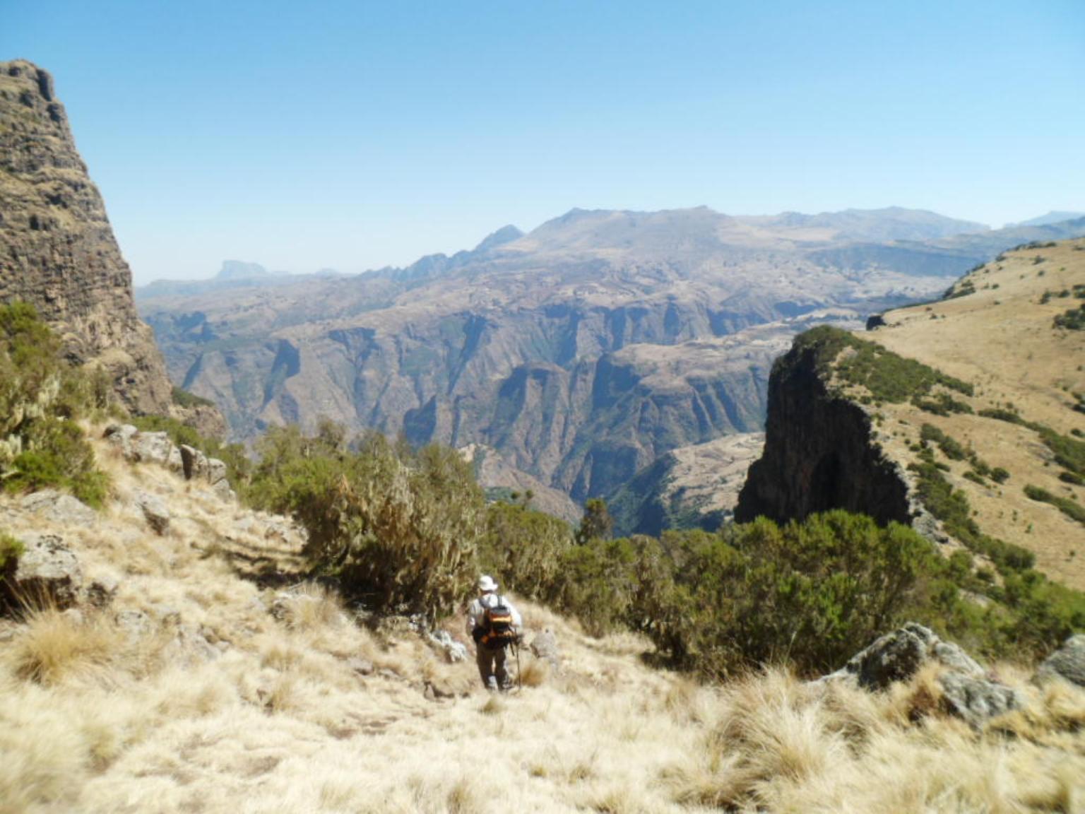 simein mountain ethiopia