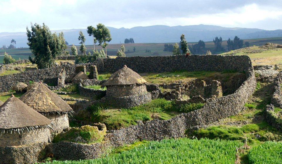 menz guassa village